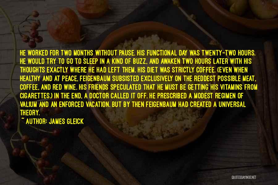 I'm Going On Vacation Quotes By James Gleick
