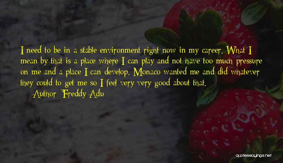 I'm In A Good Place Right Now Quotes By Freddy Adu