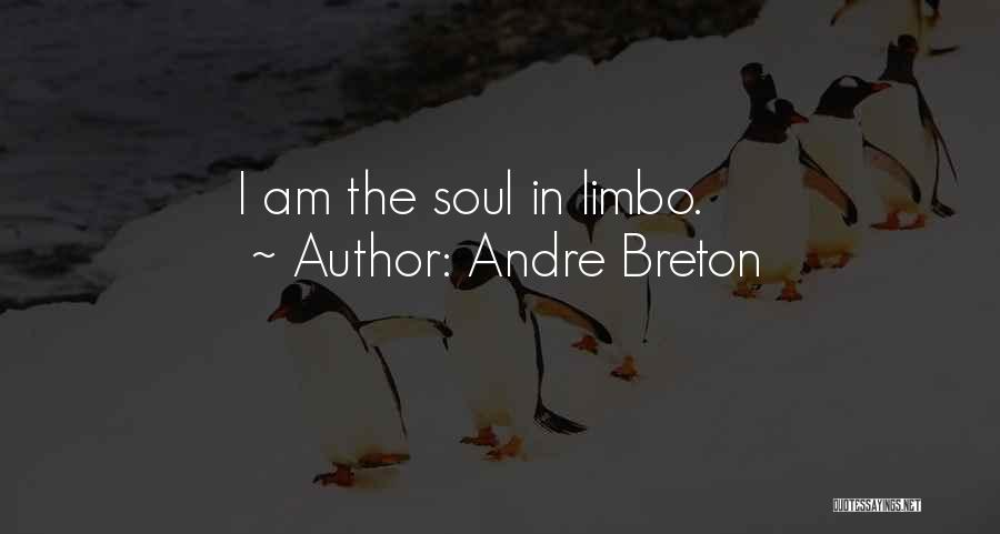 I'm In Limbo Quotes By Andre Breton
