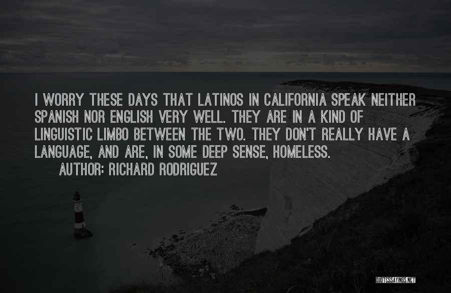 I'm In Limbo Quotes By Richard Rodriguez