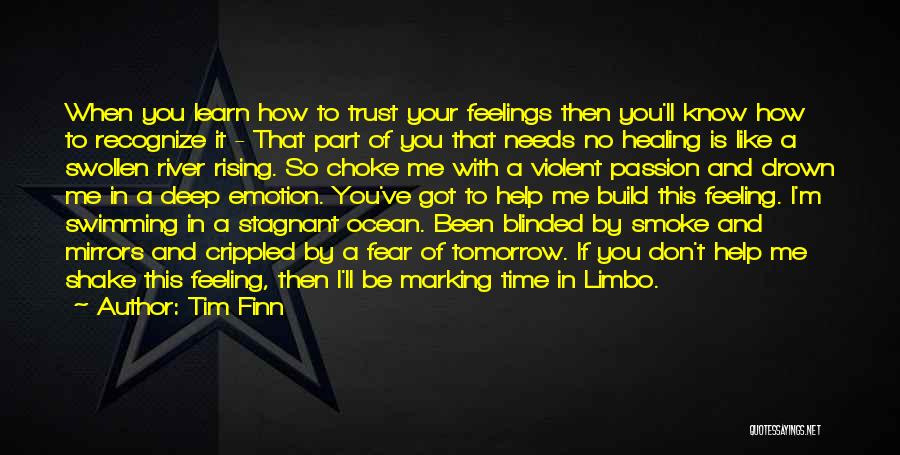 I'm In Limbo Quotes By Tim Finn