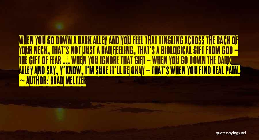 I'm Just Feeling Down Quotes By Brad Meltzer