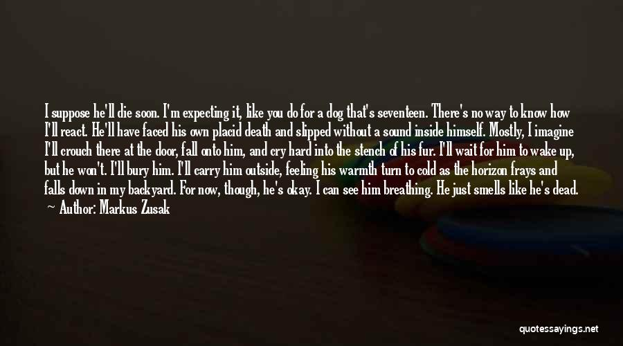 I'm Just Feeling Down Quotes By Markus Zusak