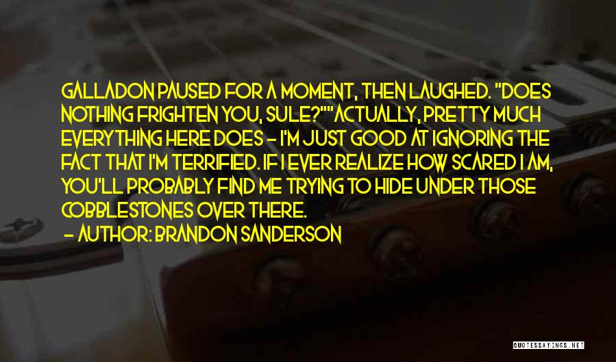 I'm Just Nothing To You Quotes By Brandon Sanderson
