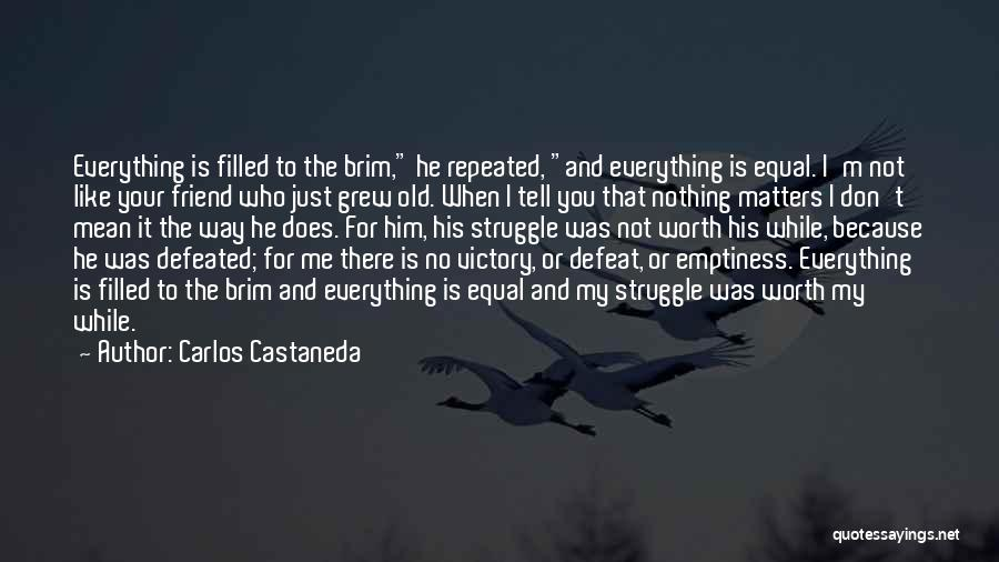 I'm Just Nothing To You Quotes By Carlos Castaneda