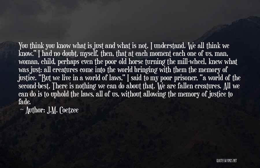 I'm Just Nothing To You Quotes By J.M. Coetzee