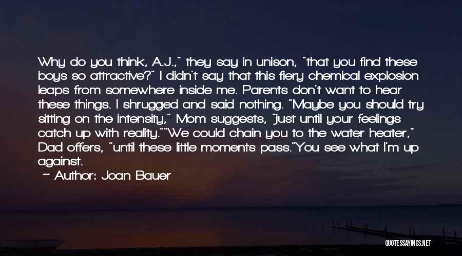 I'm Just Nothing To You Quotes By Joan Bauer