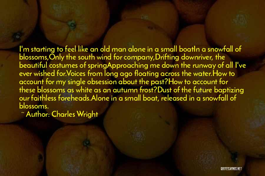 I'm Like A Wind Quotes By Charles Wright