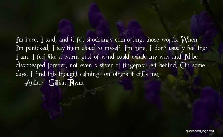 I'm Like A Wind Quotes By Gillian Flynn
