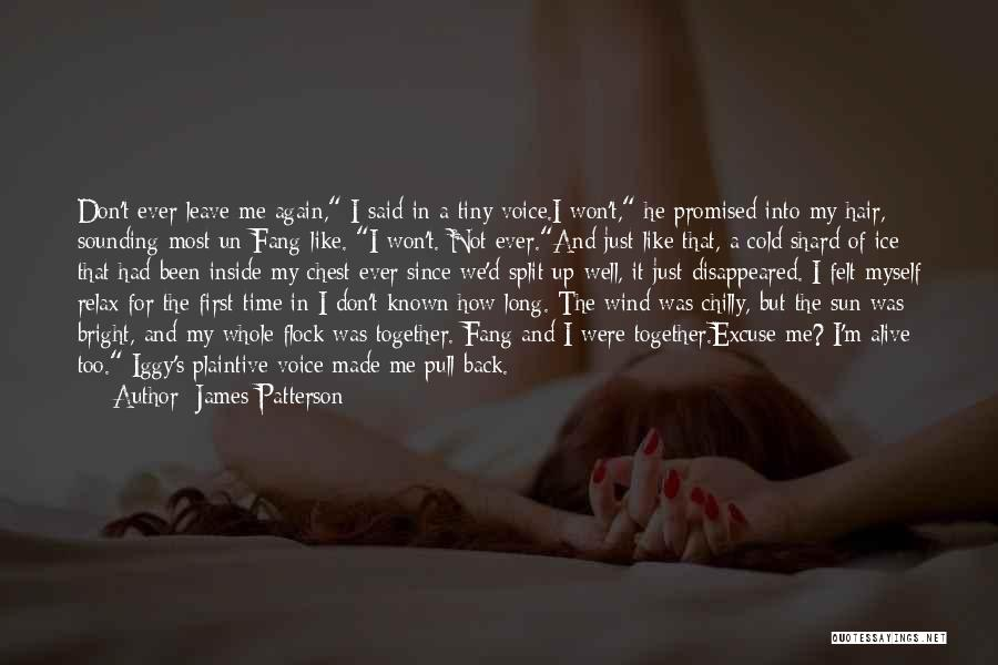 I'm Like A Wind Quotes By James Patterson