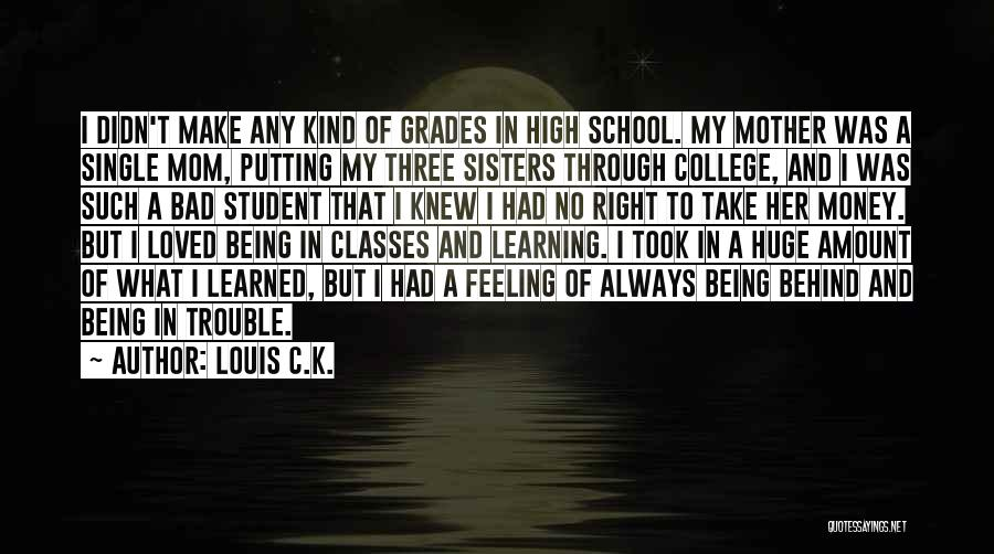 I'm Not A Bad Mom Quotes By Louis C.K.
