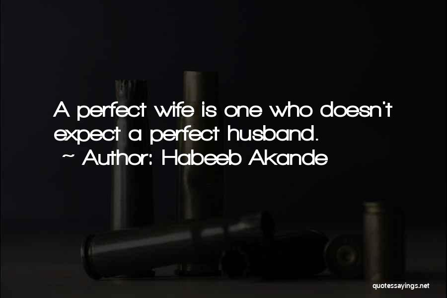 I'm Not A Perfect Wife Quotes By Habeeb Akande