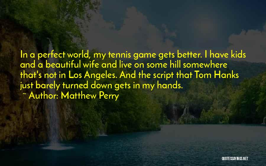 I'm Not A Perfect Wife Quotes By Matthew Perry