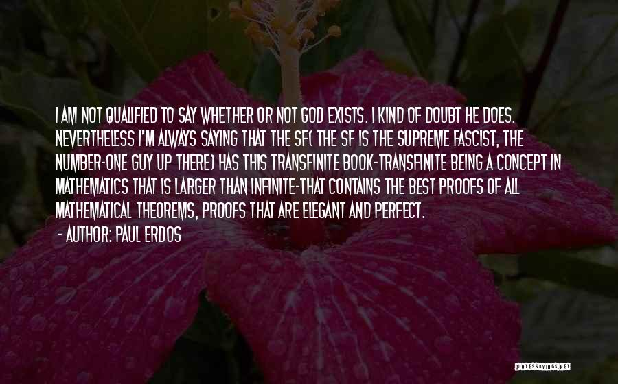 I'm Not Always Perfect Quotes By Paul Erdos