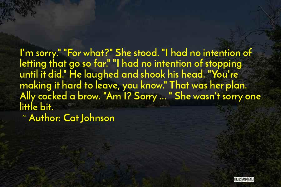 I'm Sorry For What I Did Quotes By Cat Johnson