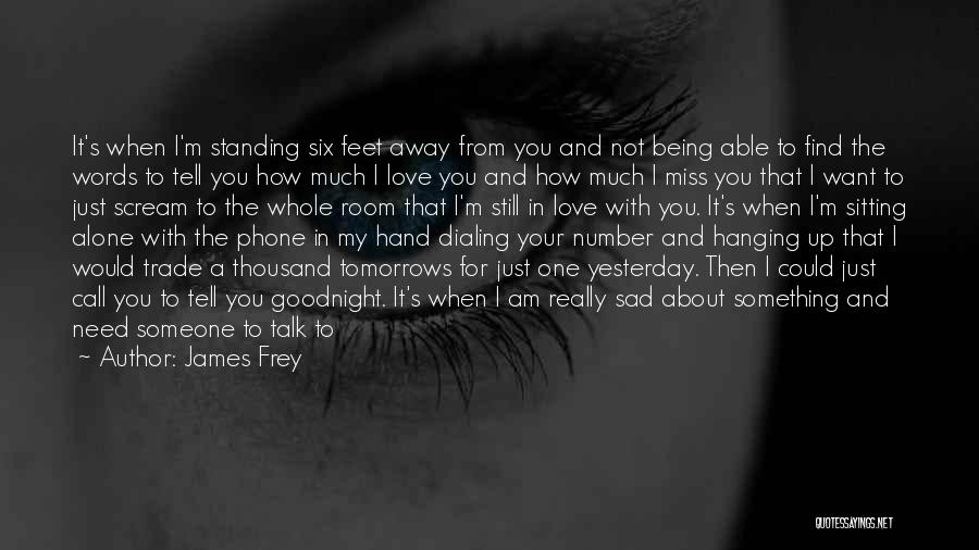 I'm Still Standing Quotes By James Frey
