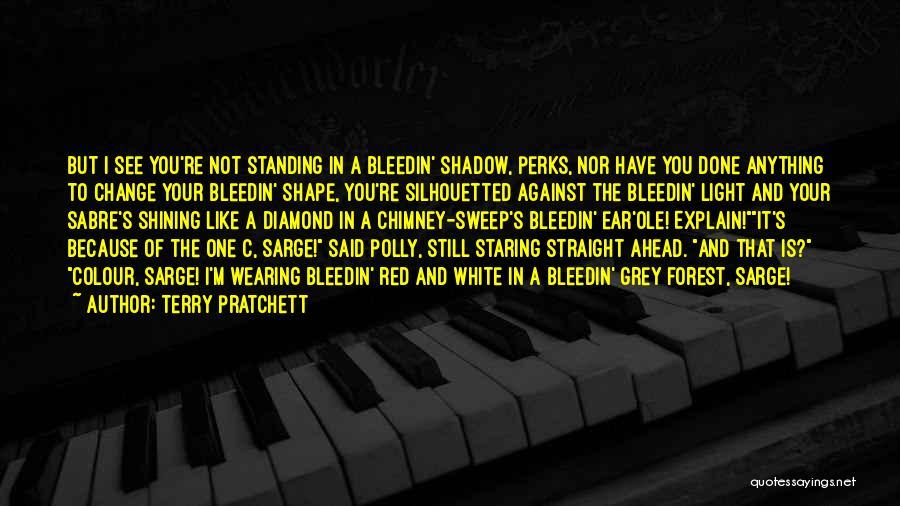 I'm Still Standing Quotes By Terry Pratchett