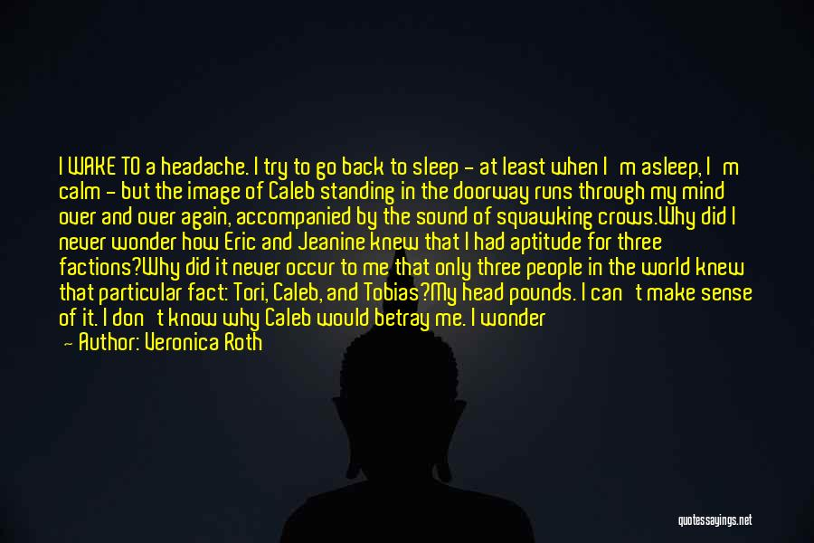 I'm Still Standing Quotes By Veronica Roth