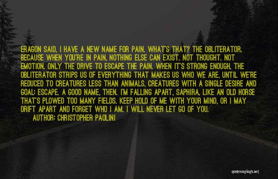 I'm Strong Because Of You Quotes By Christopher Paolini