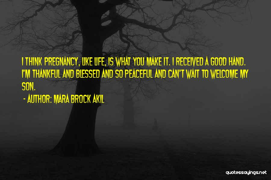 I'm Thankful For My Son Quotes By Mara Brock Akil