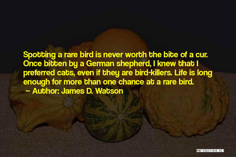 I'm Worth More Than That Quotes By James D. Watson
