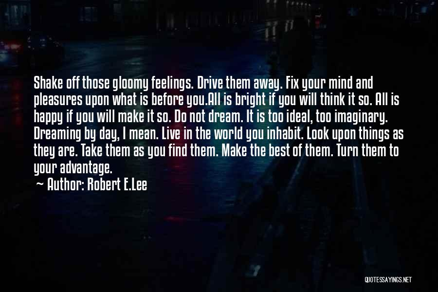 Imaginary World Quotes By Robert E.Lee