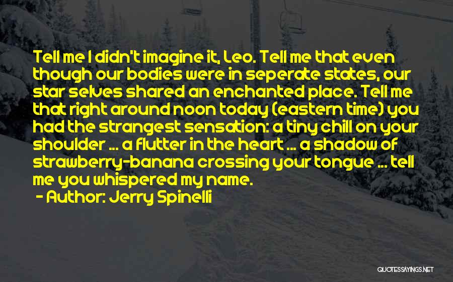 Imagine A Place Quotes By Jerry Spinelli