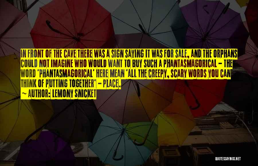 Imagine A Place Quotes By Lemony Snicket