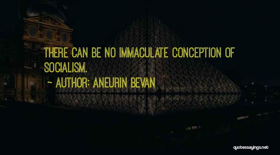 Immaculate Conception Quotes By Aneurin Bevan
