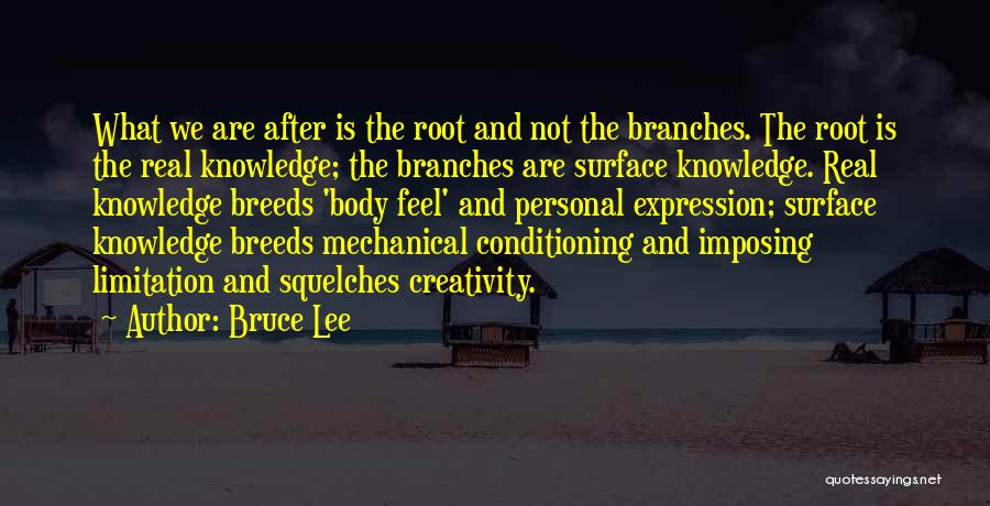 Imposing Quotes By Bruce Lee