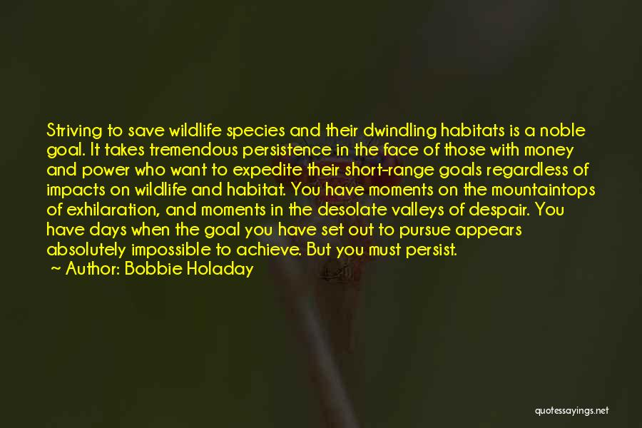 Impossible Goals Quotes By Bobbie Holaday