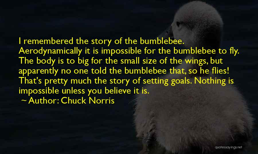 Impossible Goals Quotes By Chuck Norris