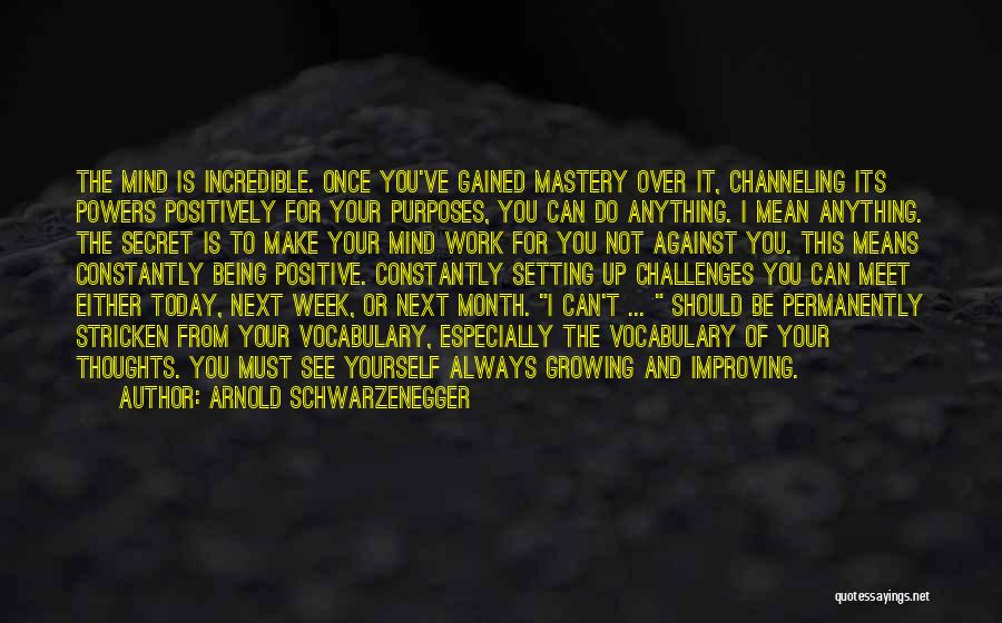 Improving Your Work Quotes By Arnold Schwarzenegger