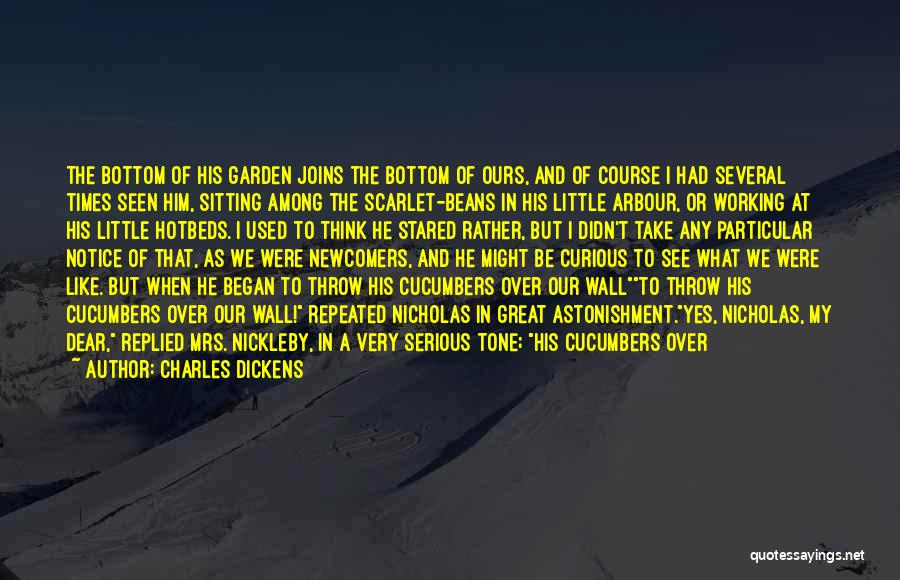Impudence Quotes By Charles Dickens
