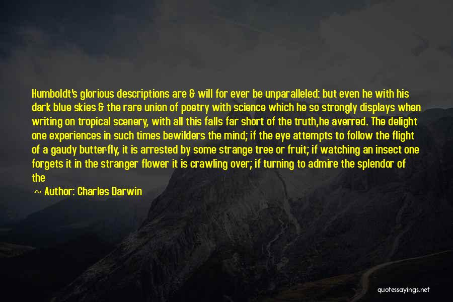 In A World Of Chaos Quotes By Charles Darwin