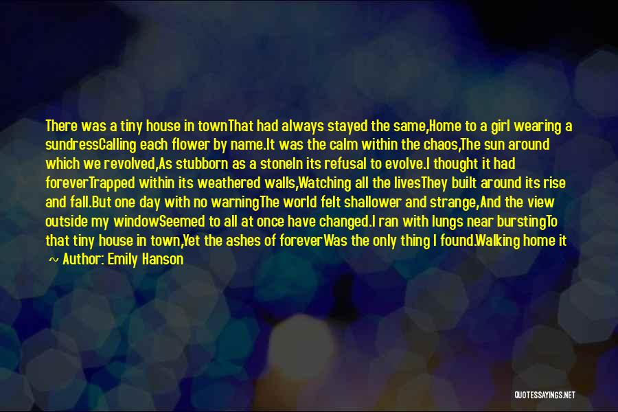 In A World Of Chaos Quotes By Emily Hanson