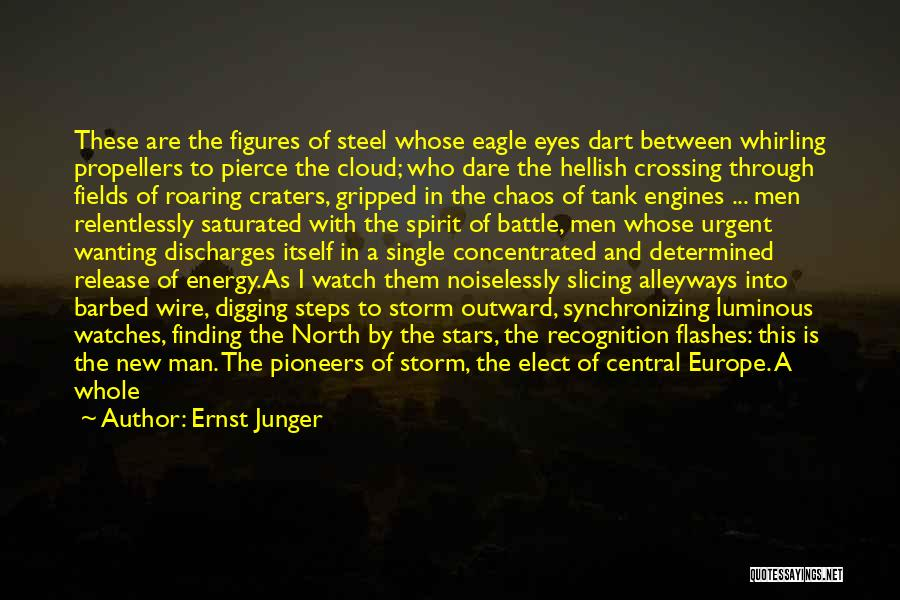 In A World Of Chaos Quotes By Ernst Junger