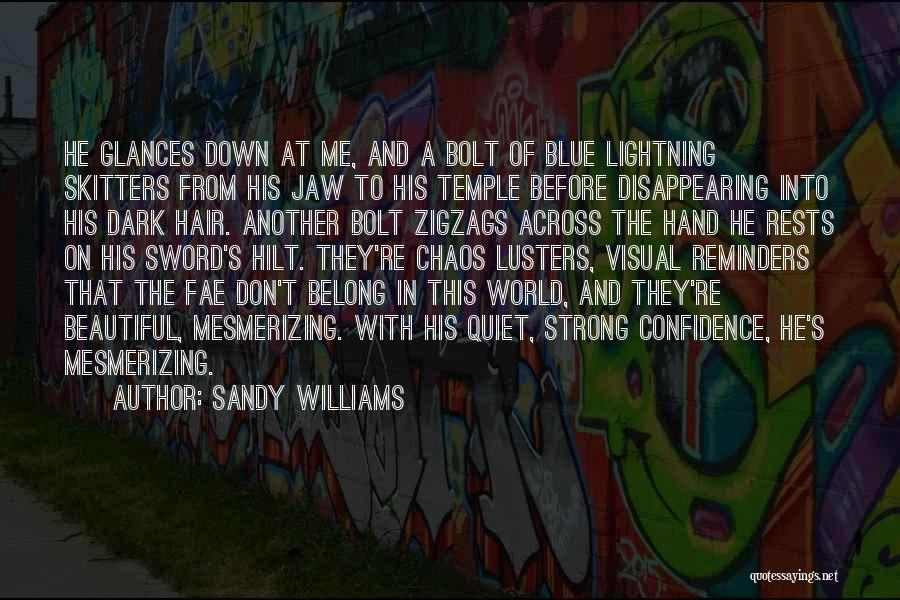 In A World Of Chaos Quotes By Sandy Williams
