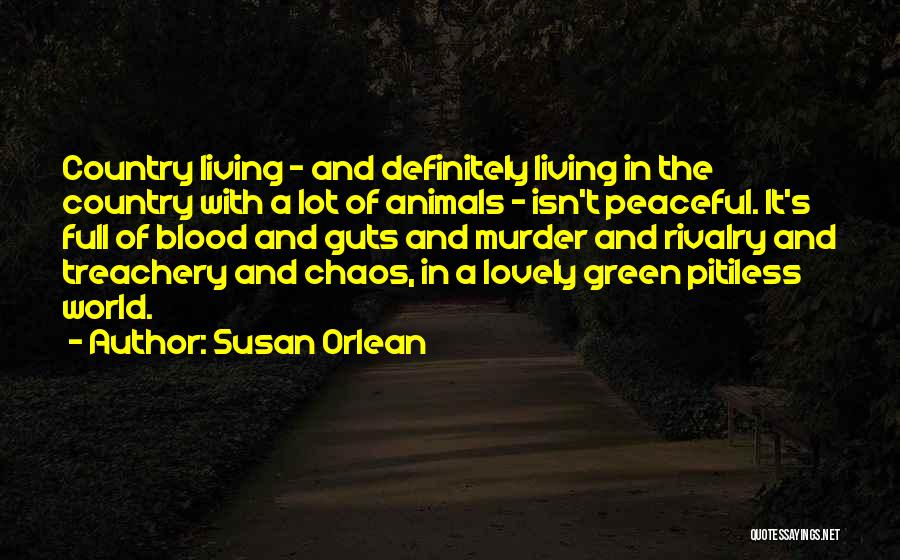In A World Of Chaos Quotes By Susan Orlean