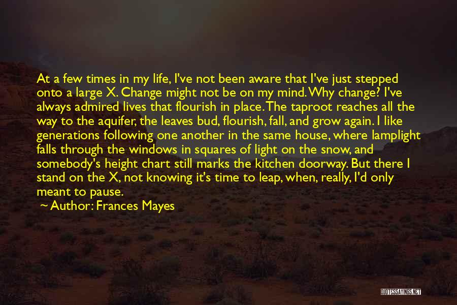 In Another Time And Place Quotes By Frances Mayes