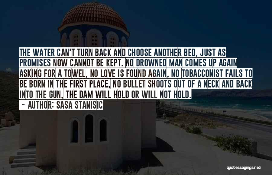 In Another Time And Place Quotes By Sasa Stanisic