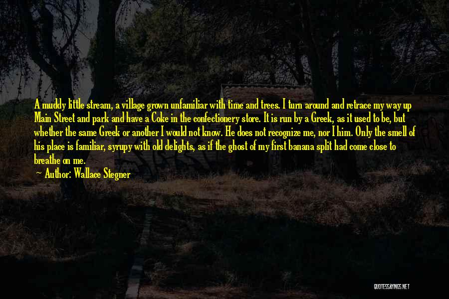 In Another Time And Place Quotes By Wallace Stegner