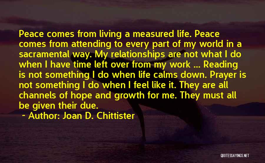 In Due Time Quotes By Joan D. Chittister