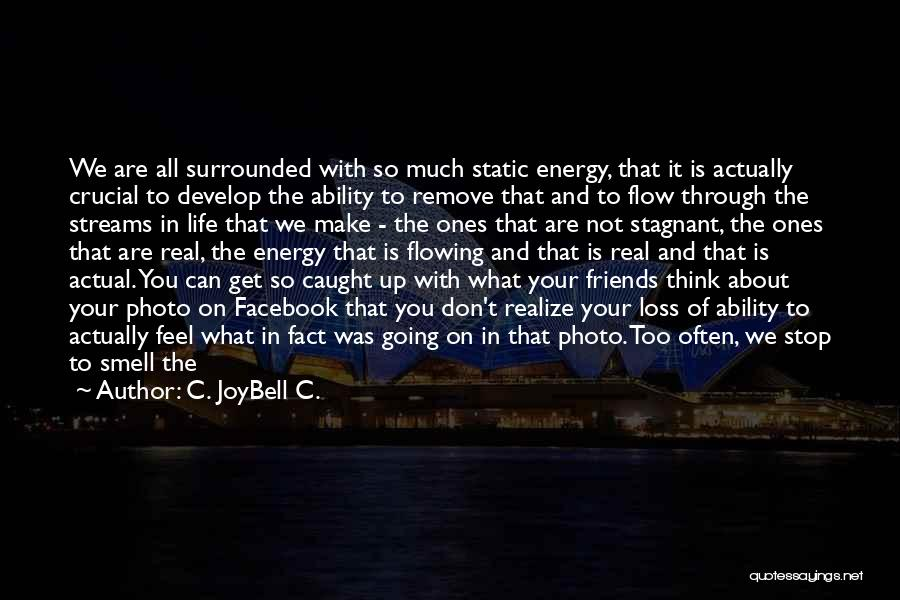 In Life Facebook Quotes By C. JoyBell C.