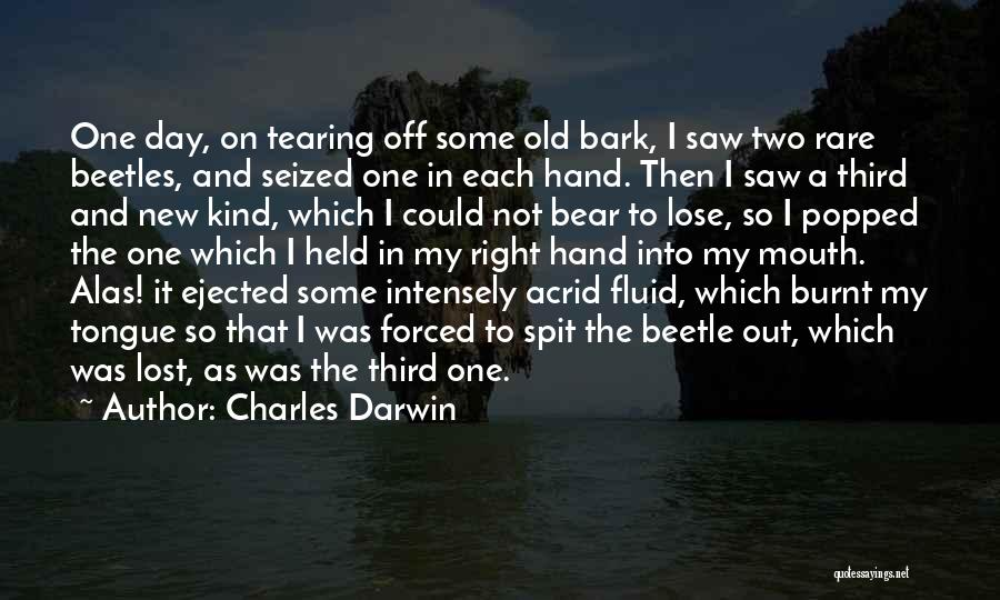 In My Hand Quotes By Charles Darwin