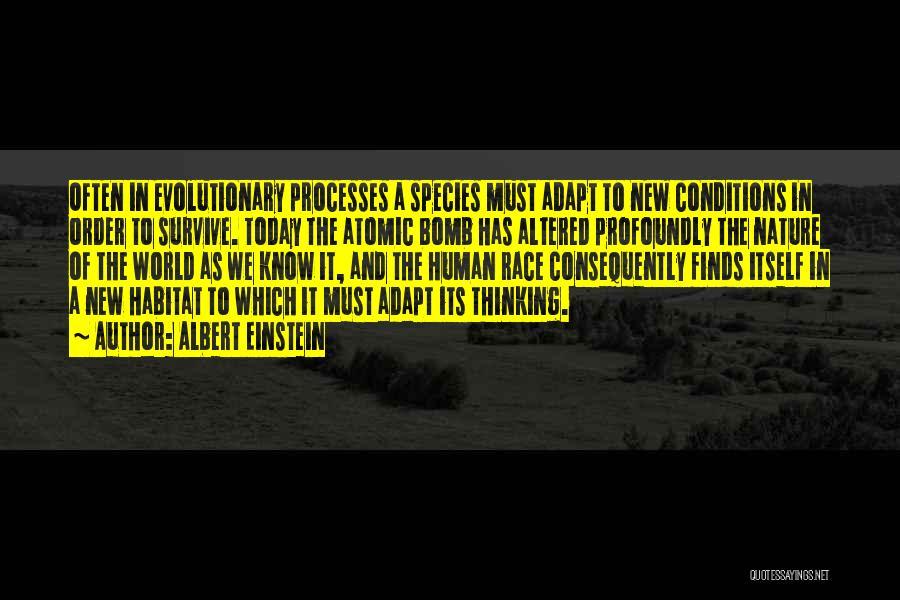 In Order To Survive Quotes By Albert Einstein