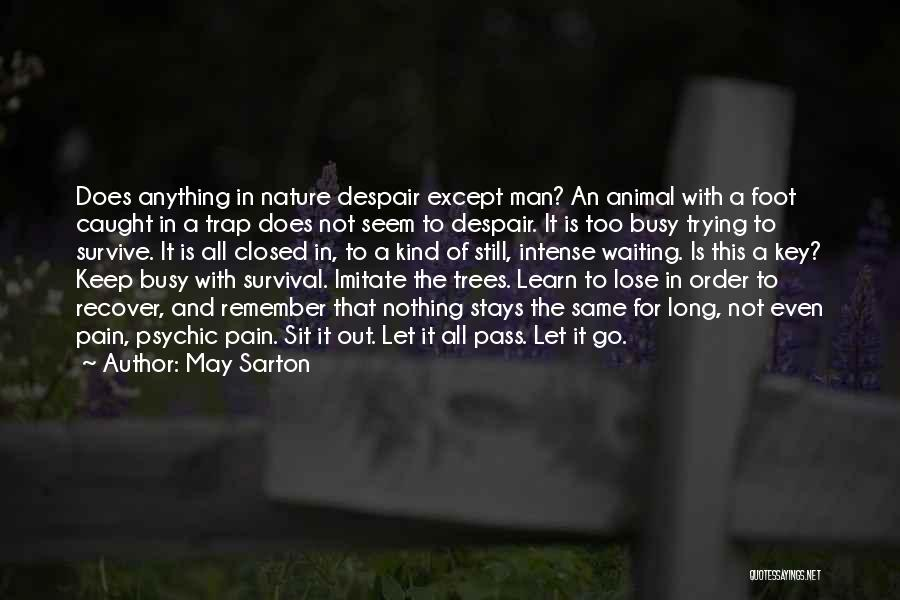In Order To Survive Quotes By May Sarton