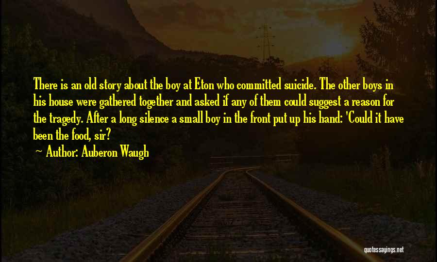 In Silence Quotes By Auberon Waugh