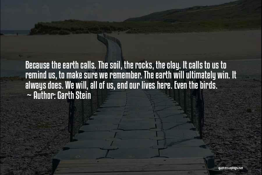 In The End I Will Win Quotes By Garth Stein