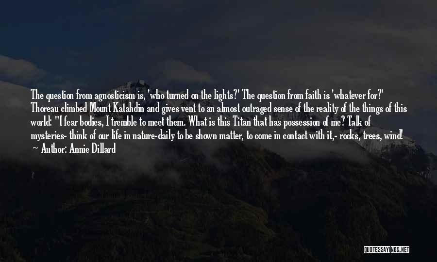In The Nature Quotes By Annie Dillard